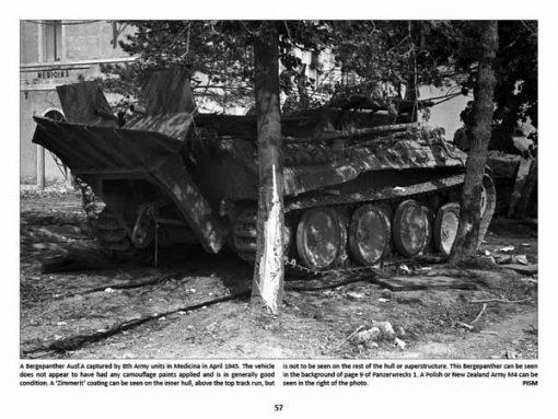 Panzerwrecks 9: Italy 1 - WW2 Panzer book. Bergepanther