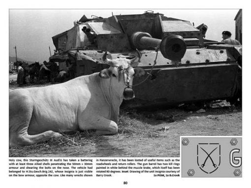 Panzerwrecks 9: Italy 1 - WW2 Panzer book. Sturmgeschütz III