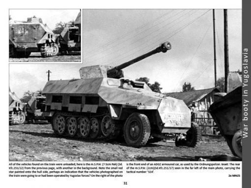 Panzerwrecks 2 - WW2 Panzer book. Sd.Kfz 251/22
