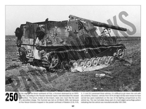Panzerwrecks 20: Ostfront 3 - WW2 Lake Balaton Panzer wrecks book. Hummel