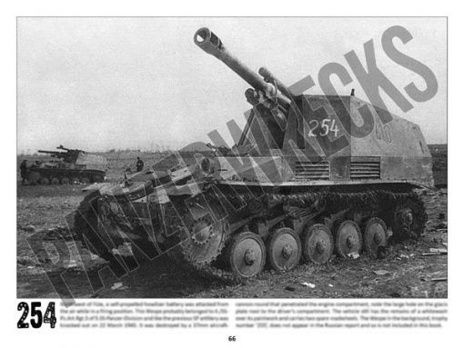 Panzerwrecks 20: Ostfront 3 - WW2 Lake Balaton Panzer wrecks book. Wespe