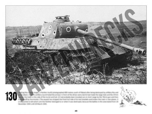 Panzerwrecks 20: Ostfront 3 - WW2 Lake Balaton Panzer wrecks book. Panther tank