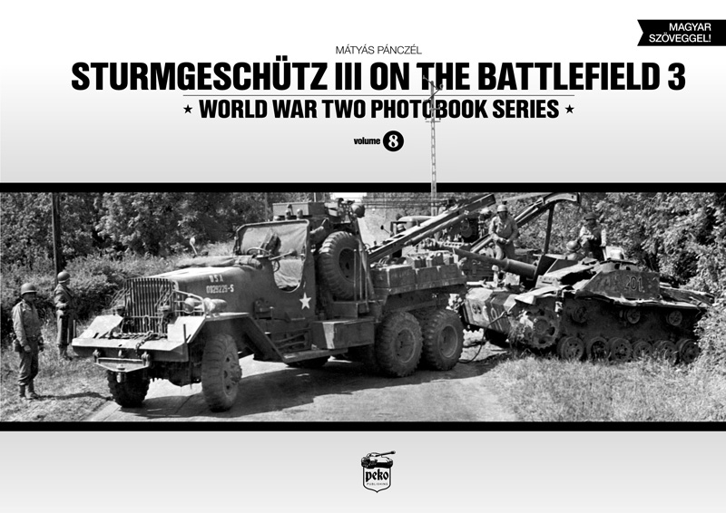 Sturmgeschütz III on the Battlefield 3 - Panzerwrecks