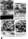 SS-Panzer-Regiment-1-LAH-7