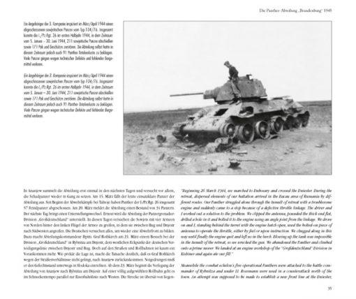Panther Battalion Brandenburg