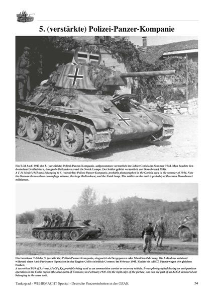 German Armoured Formations in the OZAK 1943-45
